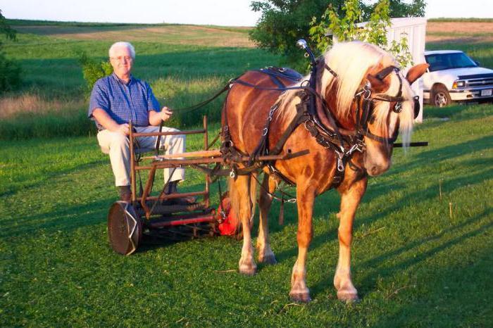 Косилка для лошади своими руками 72