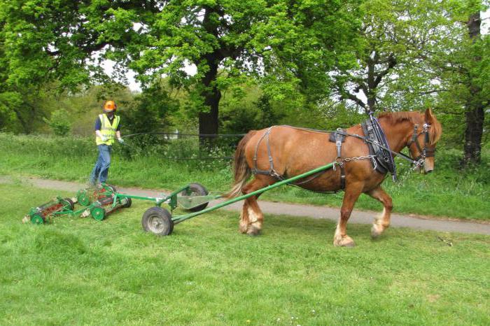 Установка и проверка конной косилки