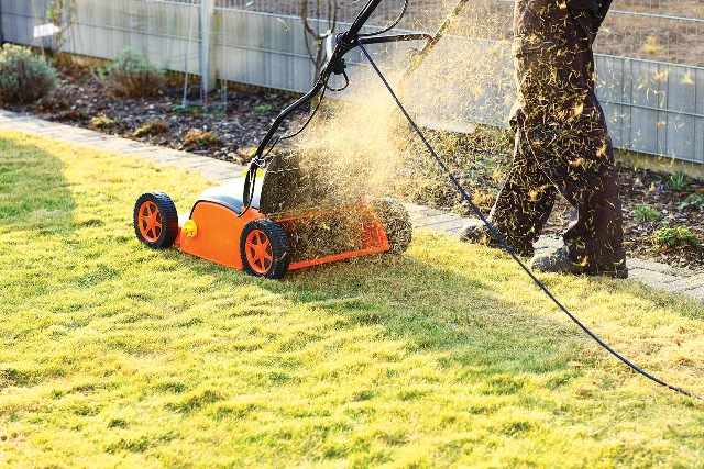 Мульчирование газона